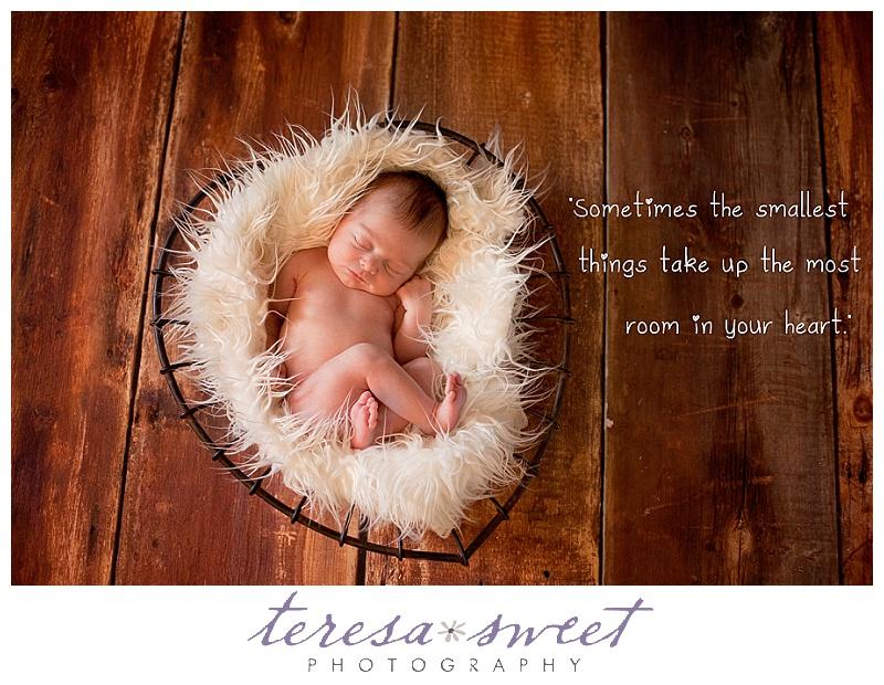 RI baby photography, RI newborn photographer, RI child photographer, RI family photographer